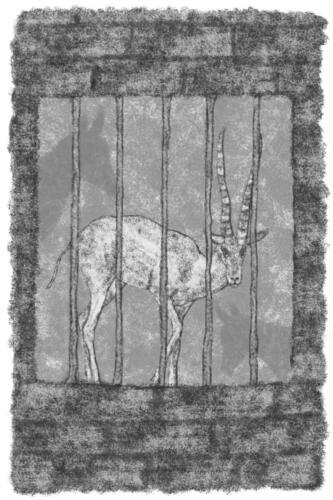 de gazalle in de ezelstal