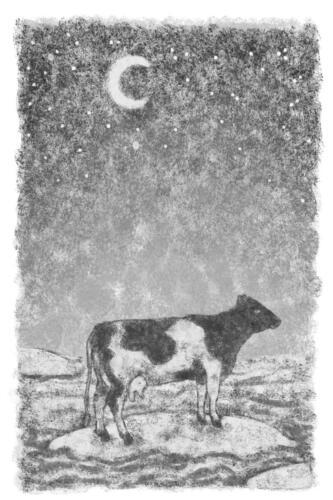 de koe op het eiland