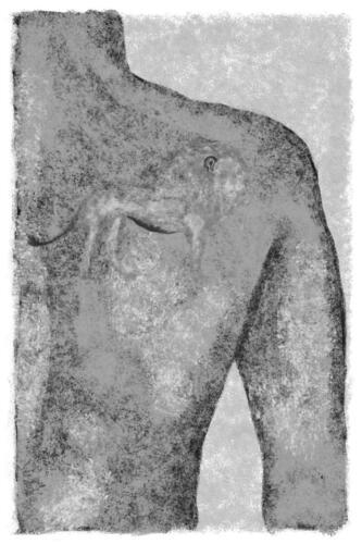 leeuw-als-tatoeage