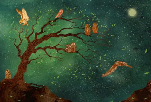 uilenboom